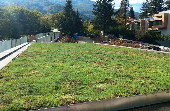 Изграждане на екстензивен зелен покрив от ВИ ДЖИ ЕФ