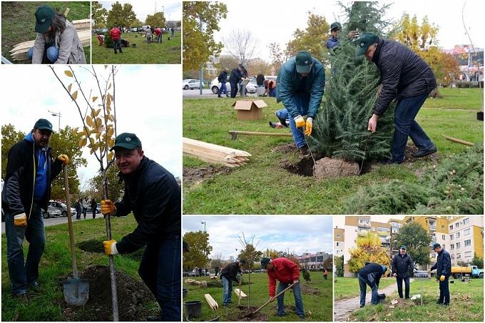 """Инициатива """"Да посадиш дърво"""""""