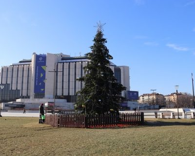 Sofia Christmas tree – stabilized with anchoring system delivered by VJF